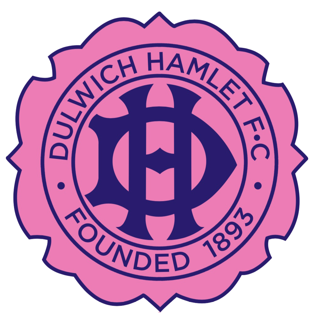 Dulwich Hamlet FC - Sports Lighting